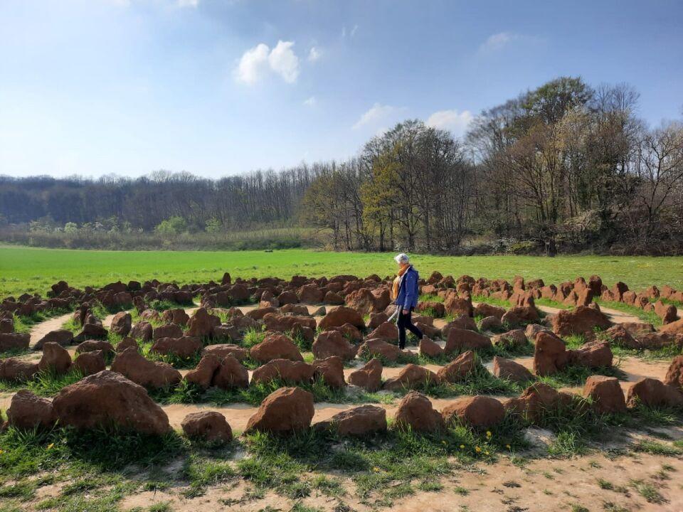 Energetische exploratie van het Chartreuzenbos