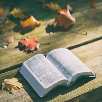 Samen lezen als toetssteen voor het leven